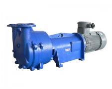 2BV水环真空泵